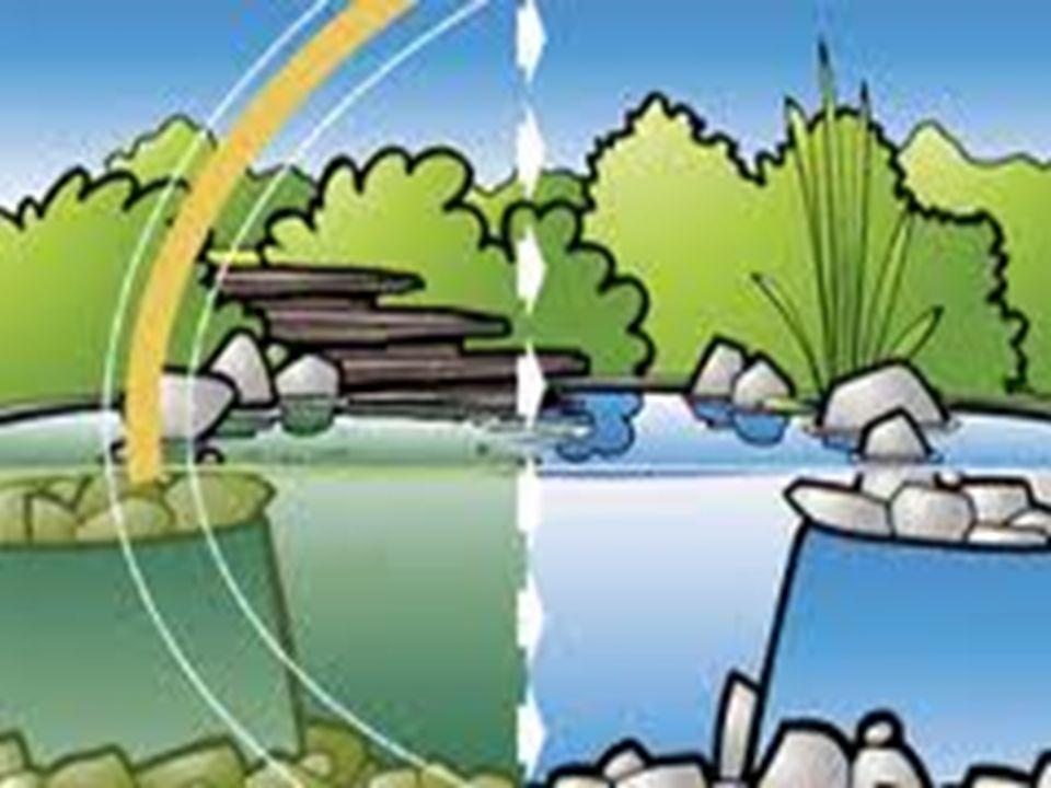  A szennyezett víz miatt sok ország szenved. Víz tisztítással segíthetünk!