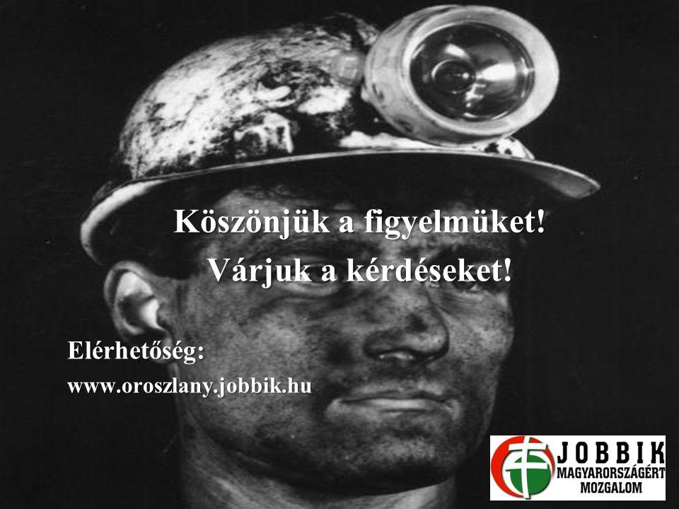 Köszönjük a figyelmüket! Várjuk a kérdéseket! Elérhetőség:www.oroszlany.jobbik.hu