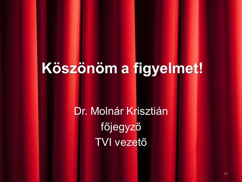 Köszönöm a figyelmet! Dr. Molnár Krisztián főjegyző TVI vezető 40