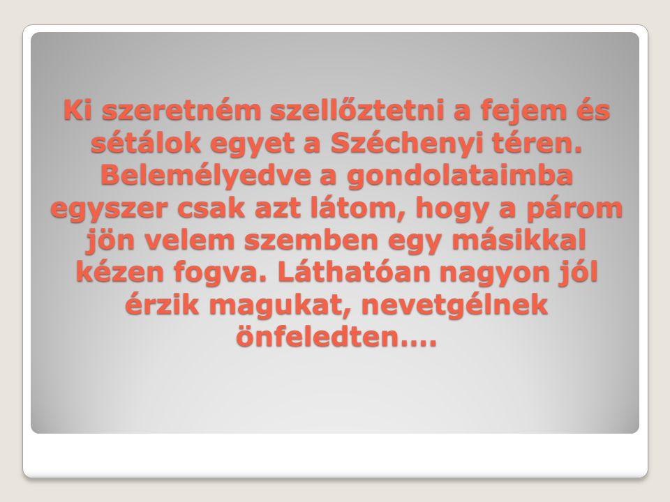 Ki szeretném szellőztetni a fejem és sétálok egyet a Széchenyi téren. Belemélyedve a gondolataimba egyszer csak azt látom, hogy a párom jön velem szem