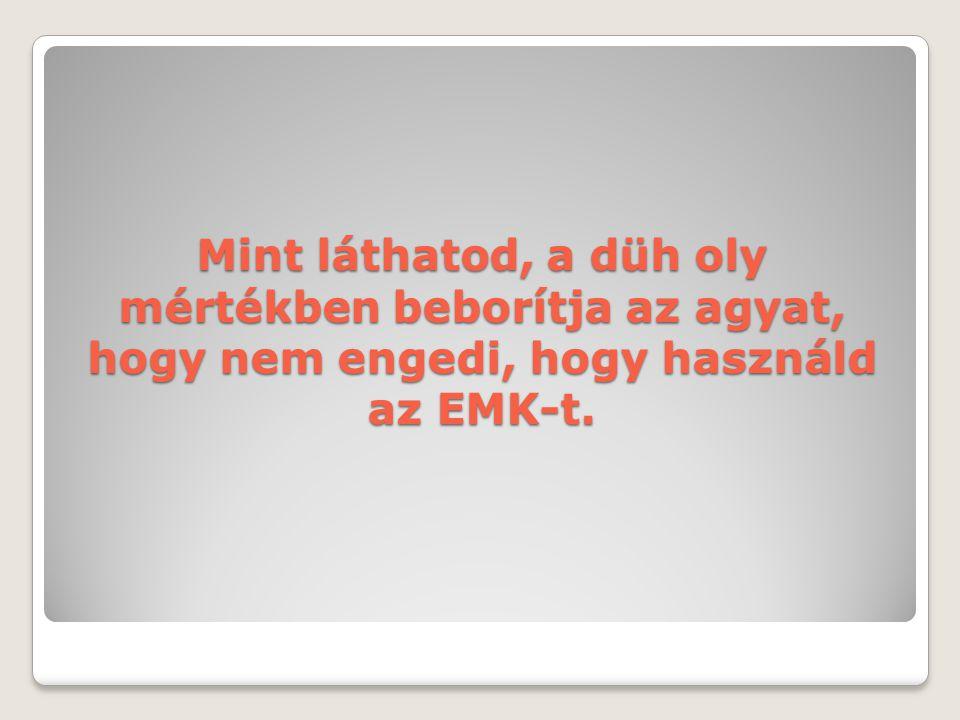 Mint láthatod, a düh oly mértékben beborítja az agyat, hogy nem engedi, hogy használd az EMK-t.