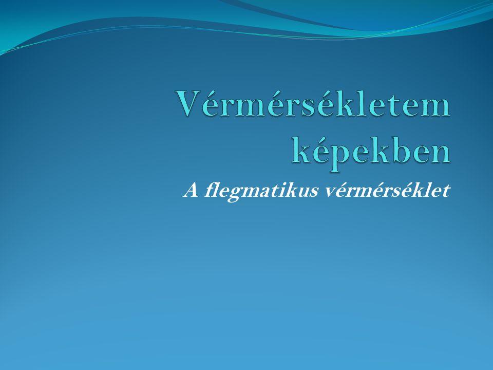 A flegmatikus alkat  A flegmatikus szó a görög phlegma testnedv szóból ered.