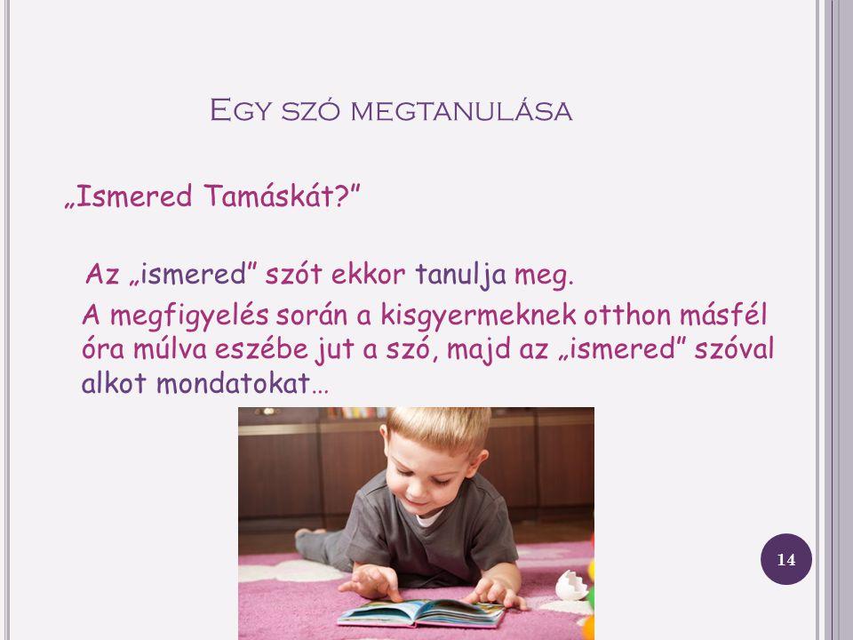 M EGGYES K LÁRA, MEGJEGYZÉS Meggyes Klára értekezett a 2 éves gyermek beszédéről. (Munkájának nem a beszédmegértés volt a fő célja.) Megfigyelése sorá