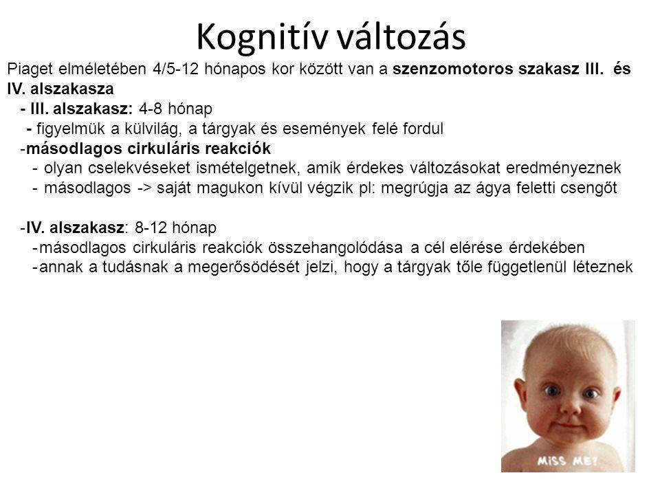 Kognitív változás Piaget elméletében 4/5-12 hónapos kor között van a szenzomotoros szakasz III. és IV. alszakasza - III. alszakasz: 4-8 hónap - figyel
