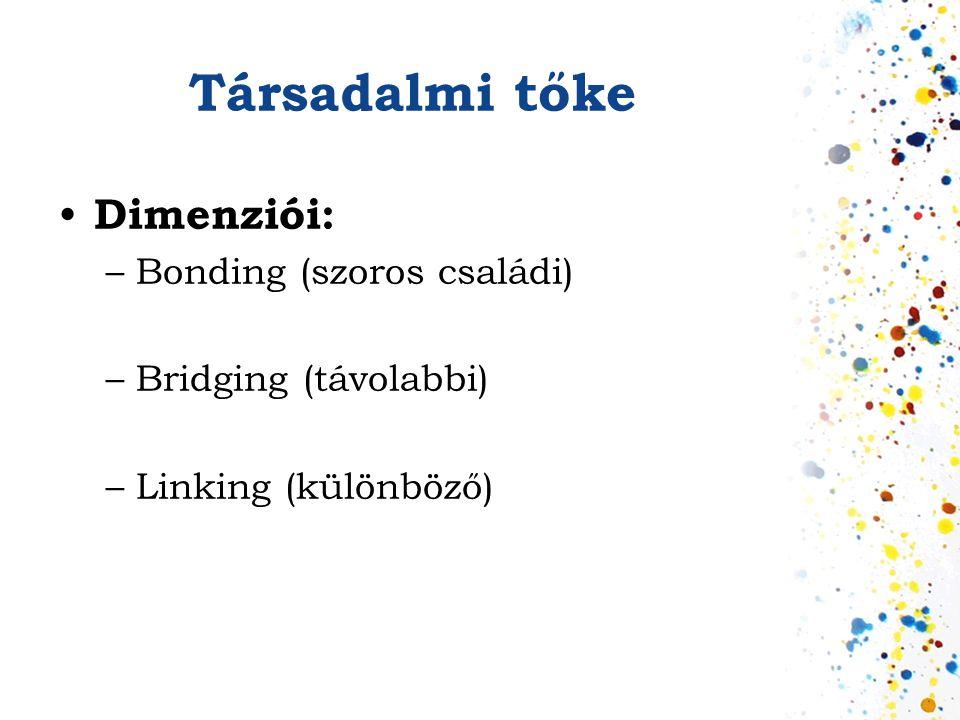 Társadalmi tőke • Dimenziói: –Bonding (szoros családi) –Bridging (távolabbi) –Linking (különböző)