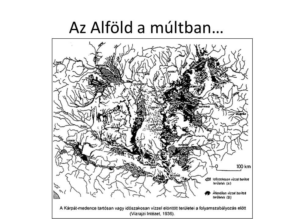 • Nagy, vízjárta területek • Sűrű erdőségek • DE.
