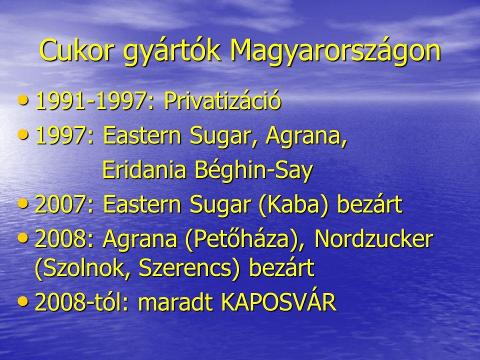 Cukor gyártók Magyarországon • 1991-1997: Privatizáció • 1997: Eastern Sugar, Agrana, Eridania Béghin-Say Eridania Béghin-Say • 2007: Eastern Sugar (K