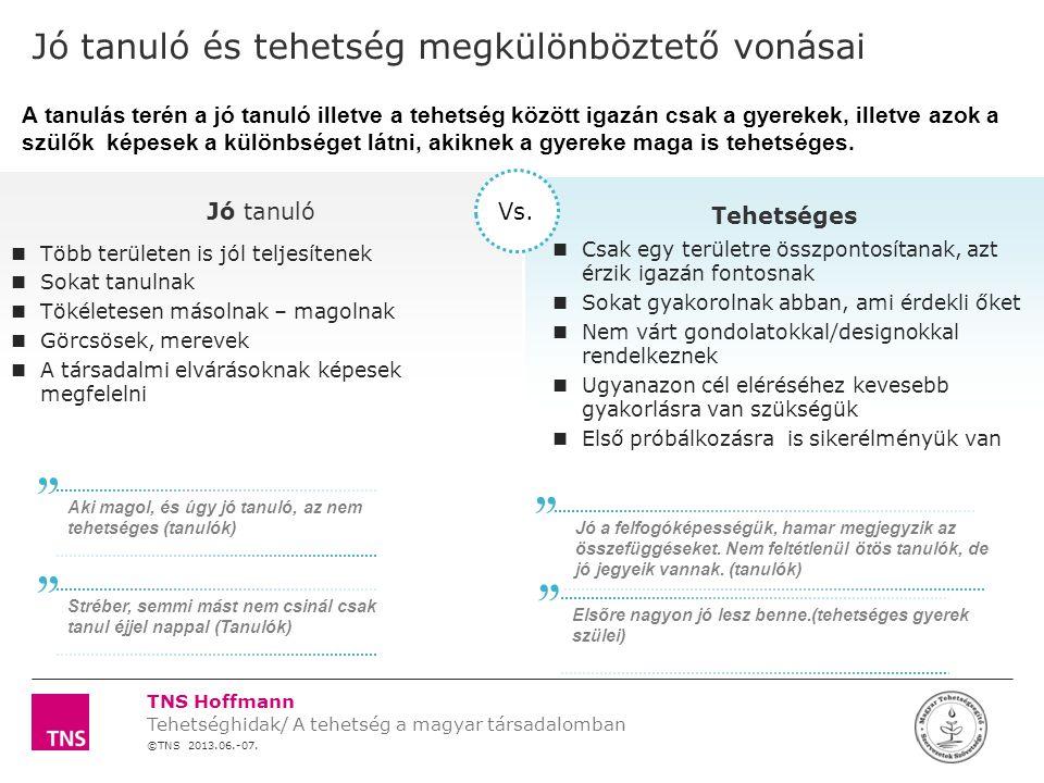 ©TNS 2013.06.-07. Tehetséghidak/ A tehetség a magyar társadalomban TNS Hoffmann X TENGELY CHART ALSÓ SZÉLE SZÖVEGDOBOZ FELSŐ SZÉLE CHART FELSŐ SZÉLE Y