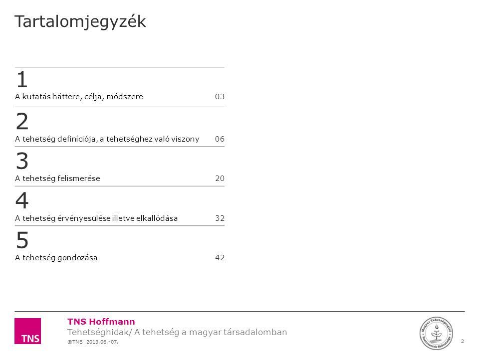 TNS Hoffmann ©TNS 2012 X AXIS LOWER LIMIT UPPER LIMIT CHART TOP Y AXIS LIMIT 23 Témaszám: 12F0000 Tehetség kutatás a MATEHETSZ számára LOGÓ SZÉLE A tehetség felismerés és gondozás főszereplői Szülő/család Tanár/adott terület szakembere #2#1 • Észlel - mi iránt érdeklődik a gyerek • Lehetőséget teremt a kibontakozásra • Folyamatosan támogat • Folyamatosan megerősíti a szülőt • Segíti a szülőt és a gyereket a fejlődésben – • Megmutatja a lehetséges lépéseket