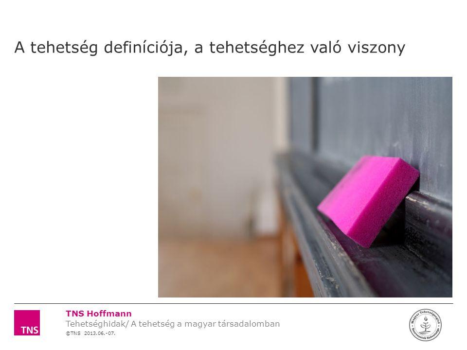 TNS Hoffmann ©TNS 2012 X AXIS LOWER LIMIT UPPER LIMIT CHART TOP Y AXIS LIMIT 17 Témaszám: 12F0000 Tehetség kutatás a MATEHETSZ számára LOGÓ SZÉLE A tehetség területeinek első asszociációi az iskolán kívüli területekre összpontosulnak  A tradicionális területek  A nem tradicionális tehetségekben való gondolkodás a szülők között nem merült fel: jó kommunikáció, logikai képesség, szervezőkészség stb.