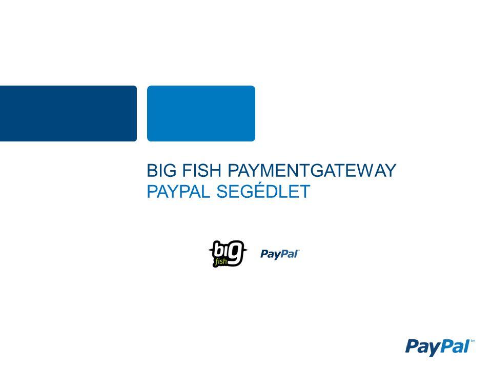 BIG FISH PAYMENTGATEWAY PAYPAL SEGÉDLET