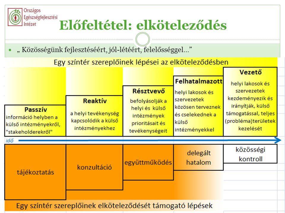 A megvalósítás pillérei  szervezet,oktatási intézmény (iskola)  feladat,jobb egészség (diák, dolgozó, család)  eljárás, egészség(fejlesztési)terv  személyzet?????.