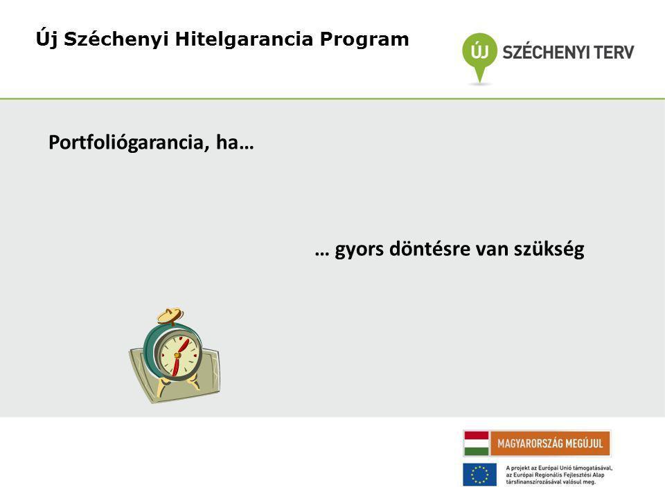 Új Széchenyi Hitelgarancia Program Portfoliógarancia, ha… … gyors döntésre van szükség