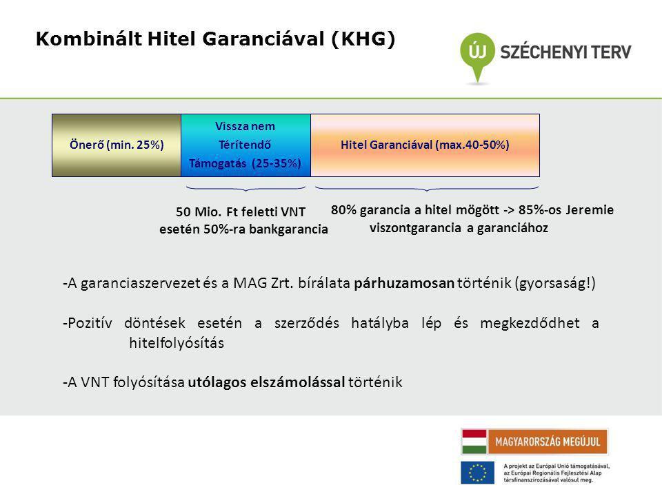 Önerő (min. 25%) Vissza nem Térítendő Támogatás (25-35%) Hitel Garanciával (max.40-50%) 50 Mio.