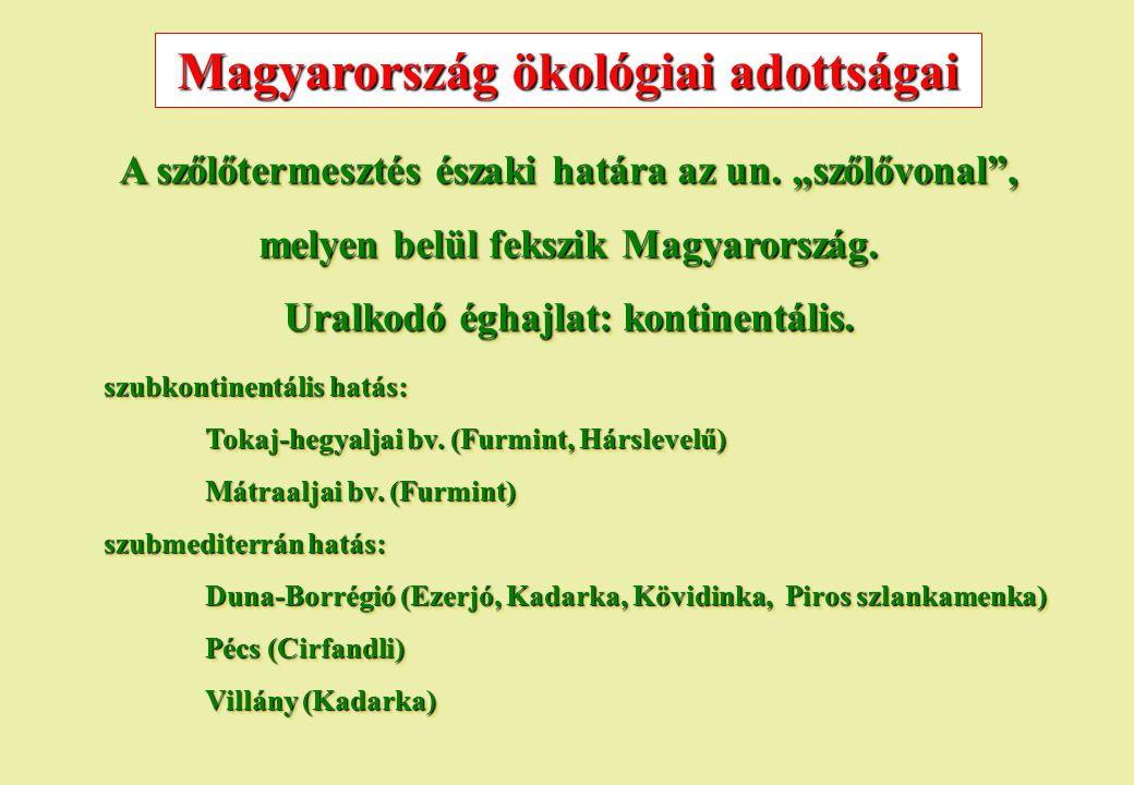 """Magyarország ökológiai adottságai A szőlőtermesztés északi határa az un. """"szőlővonal"""", melyen belül fekszik Magyarország. Uralkodó éghajlat: kontinent"""