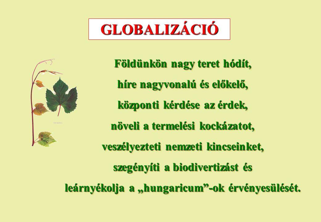 GLOBALIZÁCIÓ Földünkön nagy teret hódít, híre nagyvonalú és előkelő, központi kérdése az érdek, növeli a termelési kockázatot, veszélyezteti nemzeti k