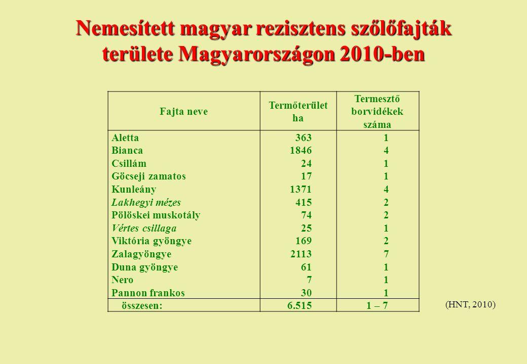 Nemesített magyar rezisztens szőlőfajták területe Magyarországon 2010-ben (HNT, 2010) Fajta neve Termőterület ha Termesztő borvidékek száma Aletta3631
