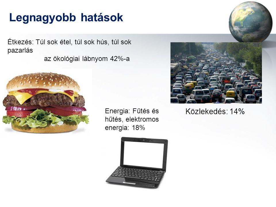 Legnagyobb hatások Közlekedés: 14% Energia: Fűtés és hűtés, elektromos energia: 18% Étkezés: Túl sok étel, túl sok hús, túl sok pazarlás az ökológiai