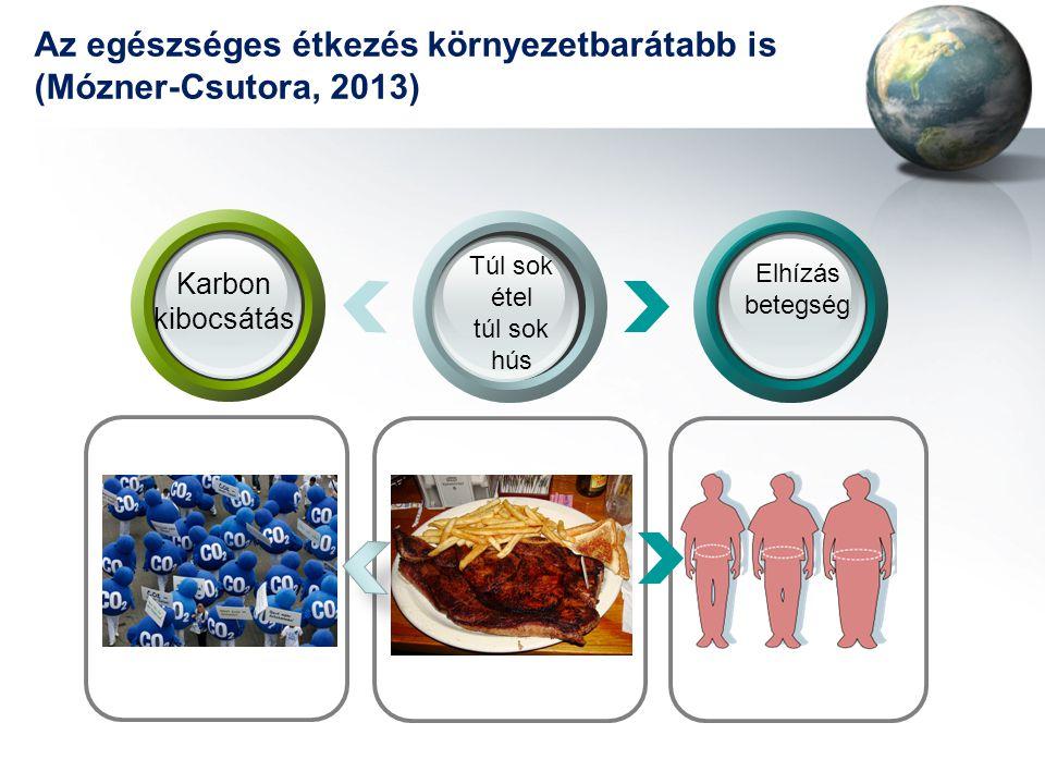 Az egészséges étkezés környezetbarátabb is (Mózner-Csutora, 2013) Karbon kibocsátás Túl sok étel túl sok hús Elhízás betegség