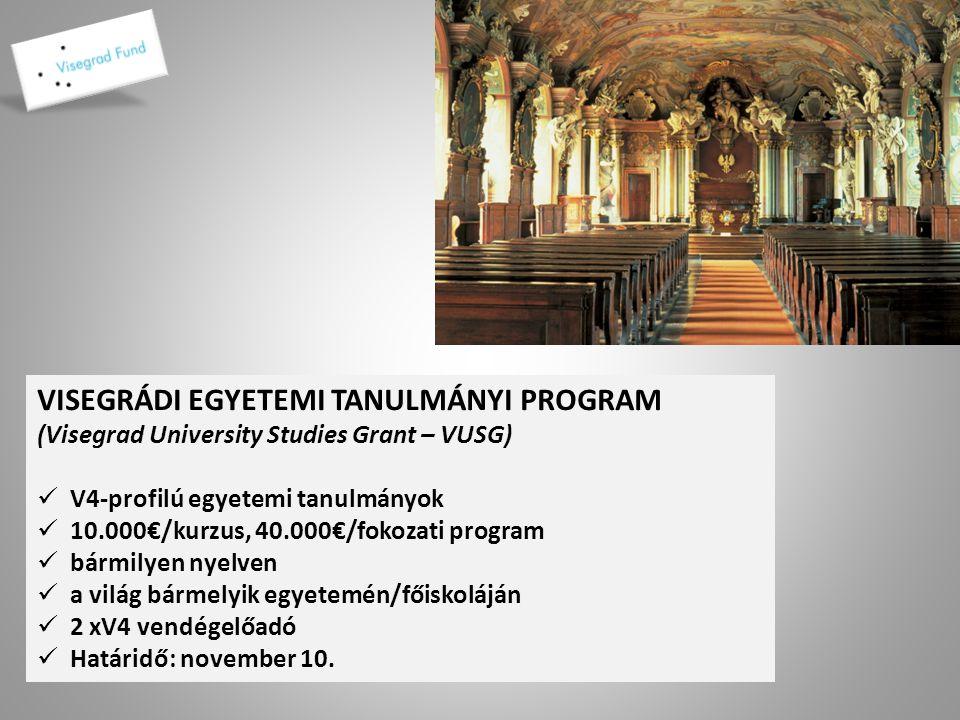 MŰVÉSZETI TANULMÁNYUTAK Visegrad Artist Residency Program-VARP Művészeti Tanulmányutak V4/New York ált.