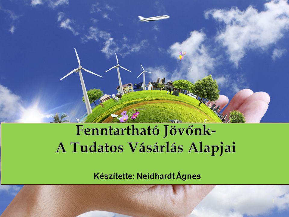 """ Civil szervezetek Tudatos Vásárlók Egyesülete """"Meggyőződésük, hogy a vásárlási tevékenység környezetre és társadalomra gyakorolt hatását tekintve tudatos vásárlói döntések elősegíthetik egy élhetőbb világ, és az ökológiailag fenntartható gazdaság kialakulását. 12 Mikroszereplők"""