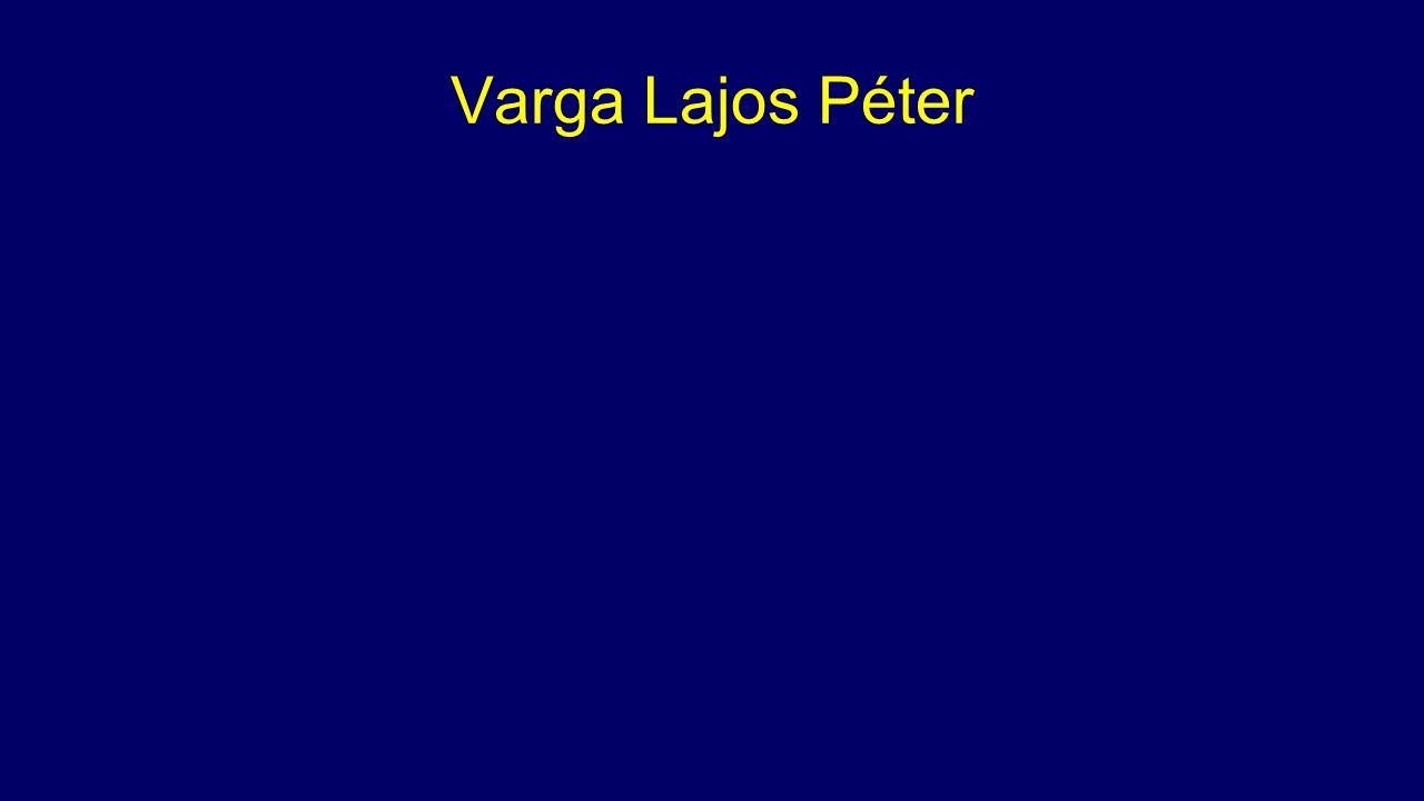 Varga Lajos Péter