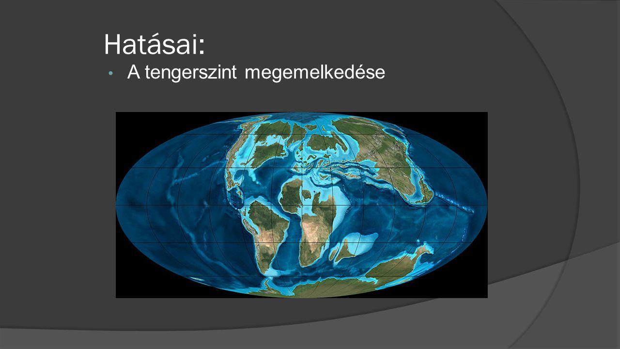 • A tengerszint megemelkedése Hatásai: