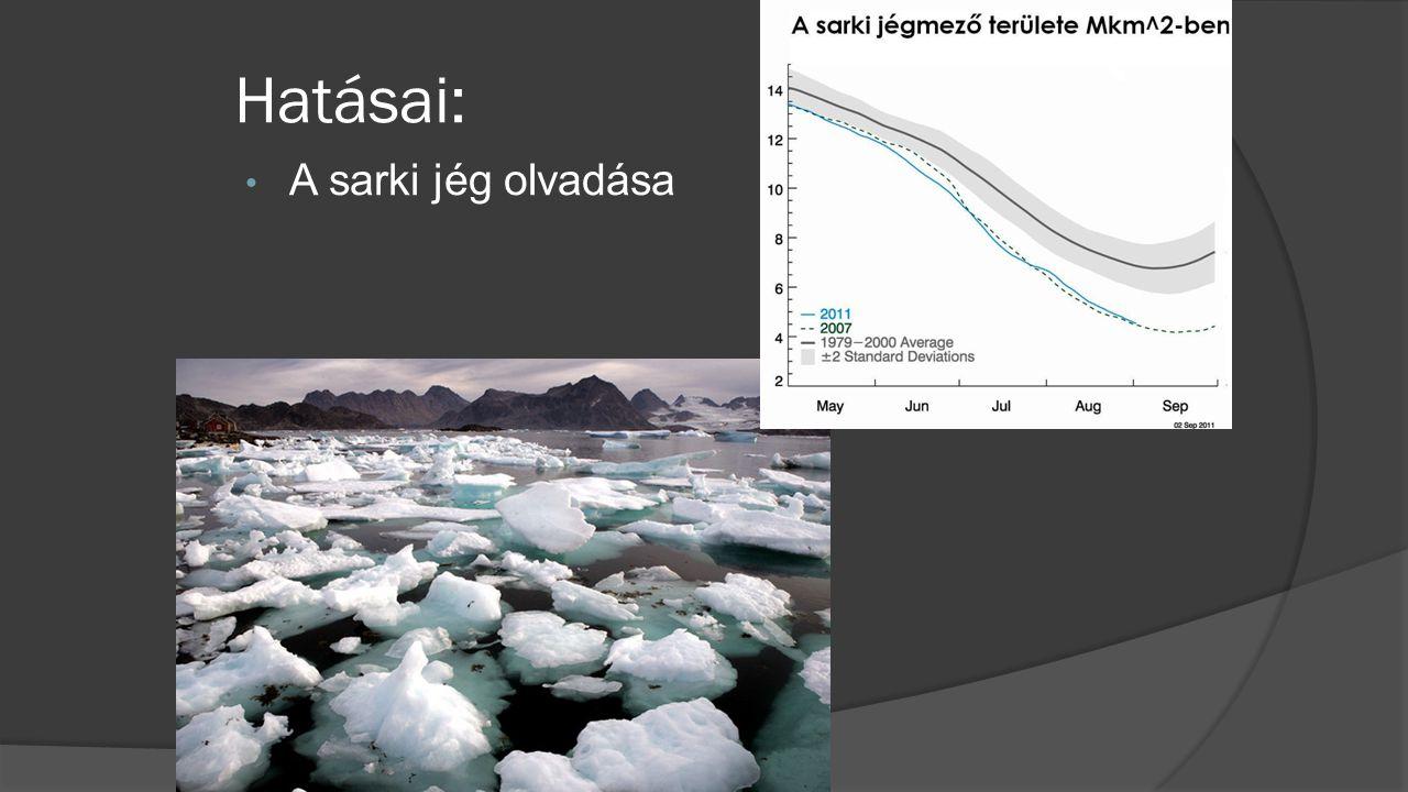 • A sarki jég olvadása Hatásai: