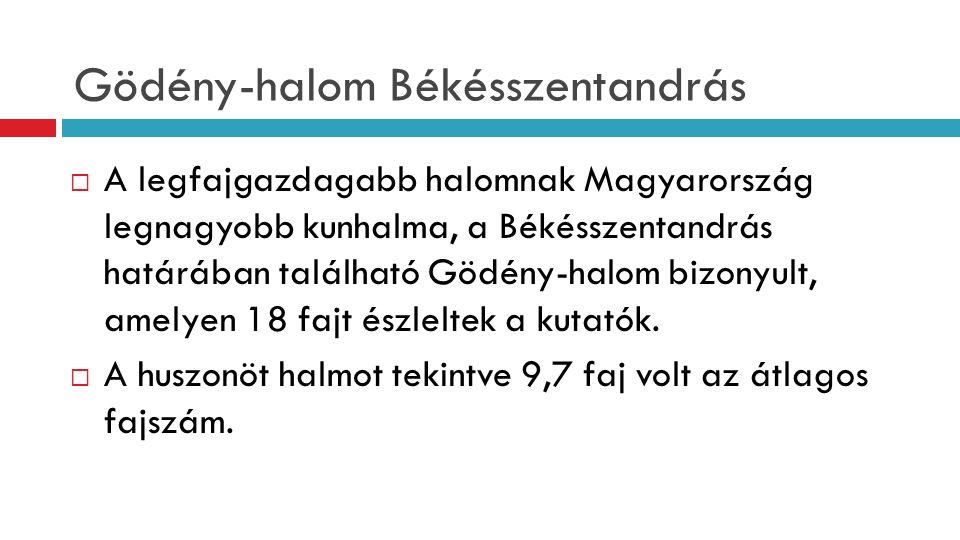 Gödény-halom Békésszentandrás  A legfajgazdagabb halomnak Magyarország legnagyobb kunhalma, a Békésszentandrás határában található Gödény-halom bizonyult, amelyen 18 fajt észleltek a kutatók.