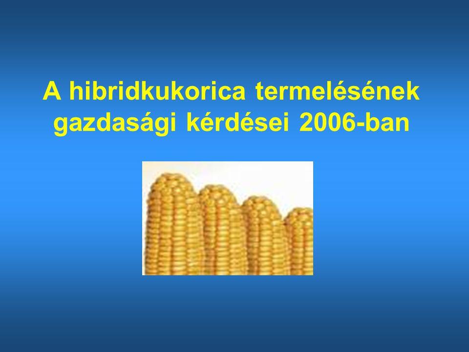A hibridkukorica termelésének gazdasági kérdései 2006-ban