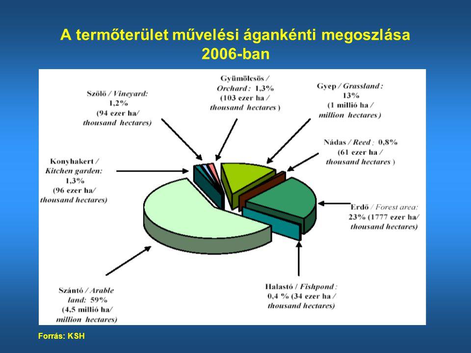 A fontosabb növények vetésterülete a szántóterületen Forrás: KSH