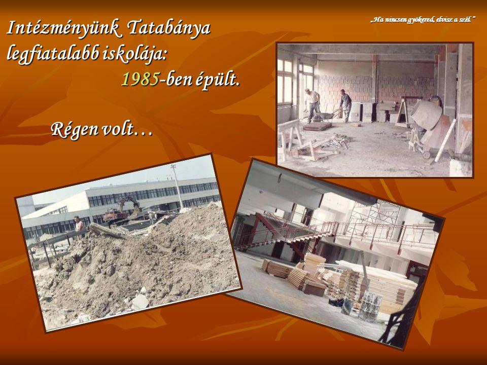 """Intézményünk Tatabánya legfiatalabb iskolája: 1985-ben épült. """"Ha nincsen gyökered, elvisz a szél."""" Régen volt…"""
