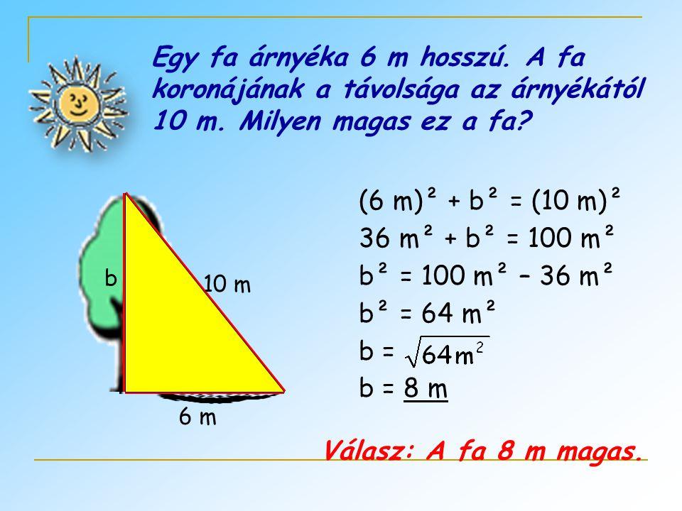 Egy fa árnyéka 6 m hosszú. A fa koronájának a távolsága az árnyékától 10 m. Milyen magas ez a fa? (6 m)² + b² = (10 m)² 36 m² + b² = 100 m² b² = 100 m