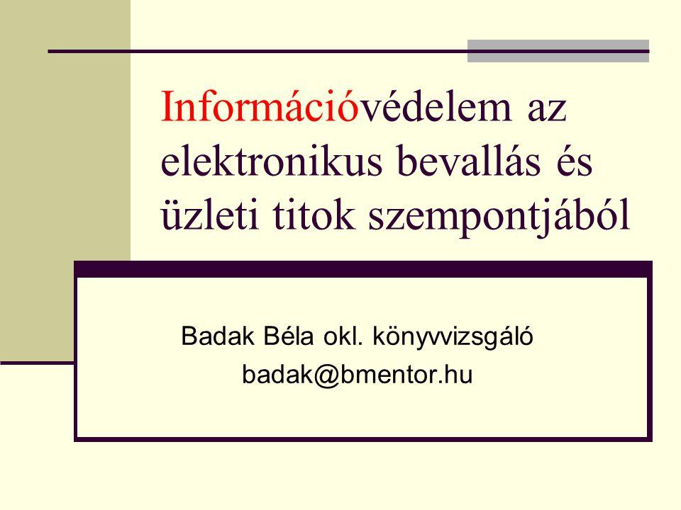 Információvédelem az elektronikus bevallás és üzleti titok szempontjából Badak Béla okl. könyvvizsgáló badak@bmentor.hu