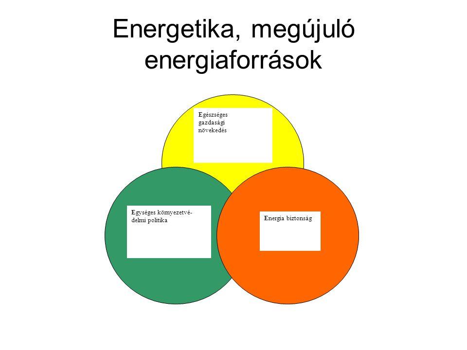 Energetika, megújuló energiaforrások Egészséges gazdasági növekedés Energia biztonság Egységes környezetvé- delmi politika