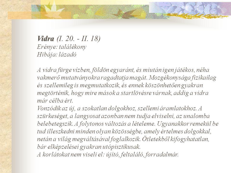 Vidra Vidra (I.20. - II.