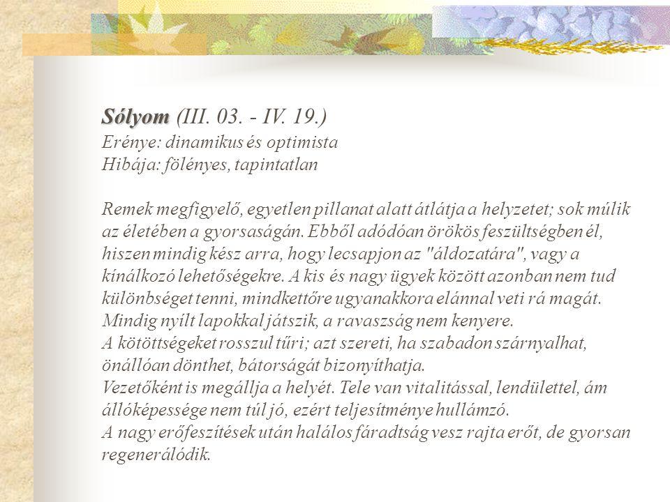 Sólyom Sólyom (III.03. - IV.