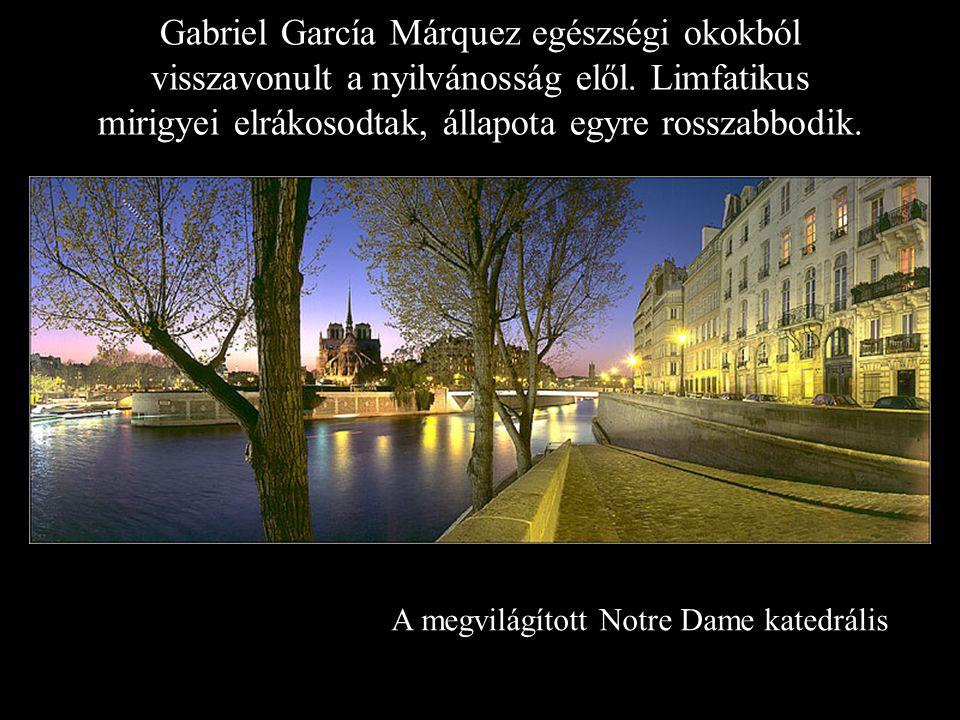 A megvilágított Notre Dame katedrális Gabriel García Márquez egészségi okokból visszavonult a nyilvánosság elől.