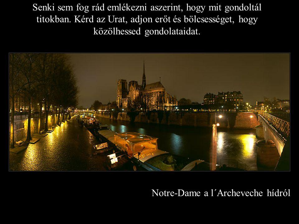 Notre-Dame a l´Archeveche hídról Senki sem fog rád emlékezni aszerint, hogy mit gondoltál titokban.