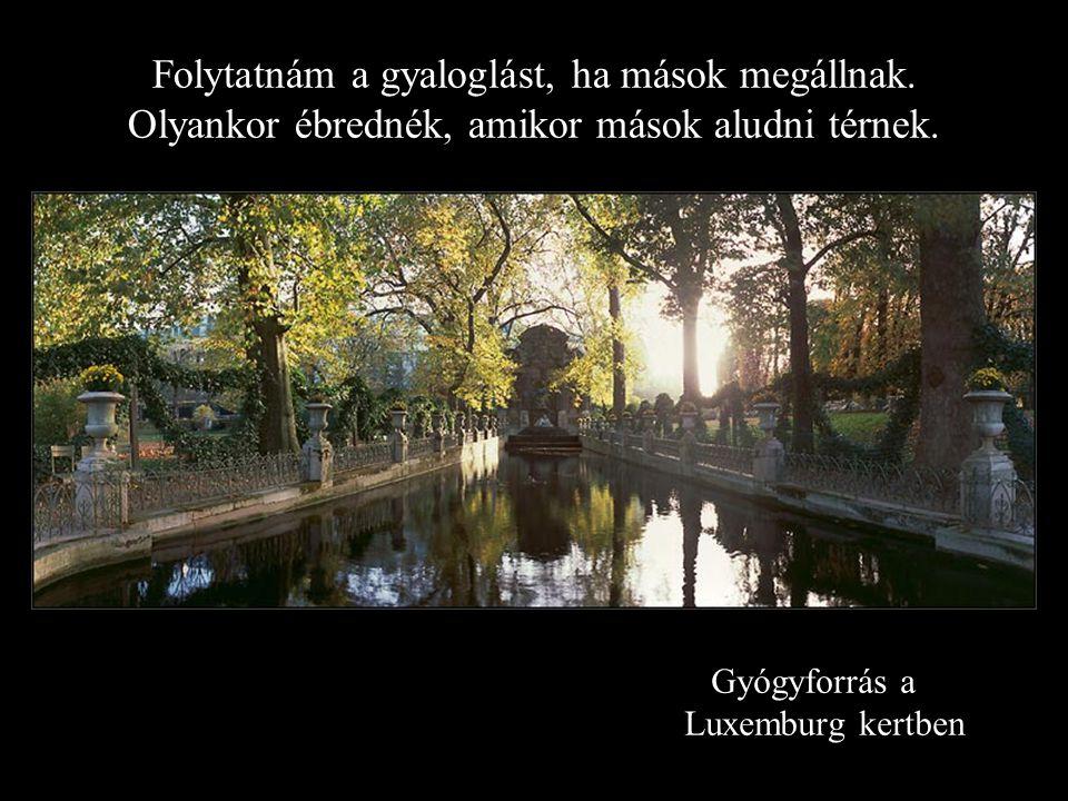 Gyógyforrás a Luxemburg kertben Folytatnám a gyaloglást, ha mások megállnak.