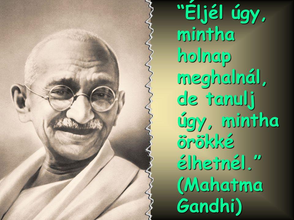 """""""Egy nemzet nagysága azzal mérhető, ahogyan az állataival bánik."""" (Gandhi)"""