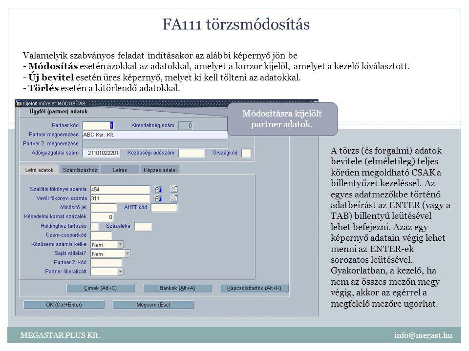 FA111 törzsmódosítás MEGASTAR PLUS Kft. info@megast.hu Valamelyik szabványos feladat indításakor az alábbi képernyő jön be - Módosítás esetén azokkal