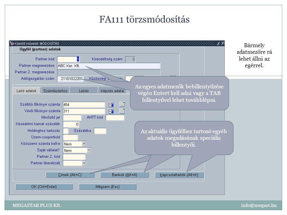 FA111 törzsmódosítás MEGASTAR PLUS Kft. info@megast.hu Bármely adatmezőre rá lehet állni az egérrel. Az egyes adatmezők bebillentyűzése végén Entert k