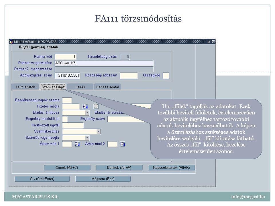 """FA111 törzsmódosítás MEGASTAR PLUS Kft. info@megast.hu Un. """"fülek"""" tagolják az adatokat. Ezek további beviteli felületek, értelemszerűen az aktuális ü"""