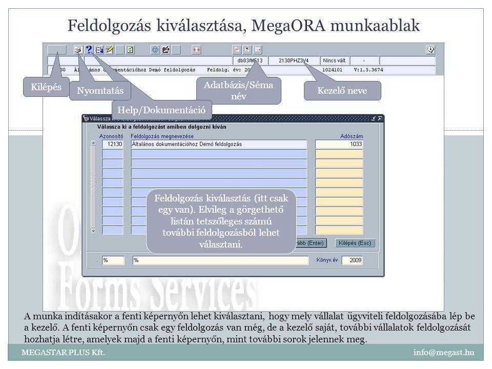 Feldolgozás kiválasztása, MegaORA munkaablak MEGASTAR PLUS Kft. info@megast.hu Feldolgozás kiválasztás (itt csak egy van). Elvileg a görgethető listán