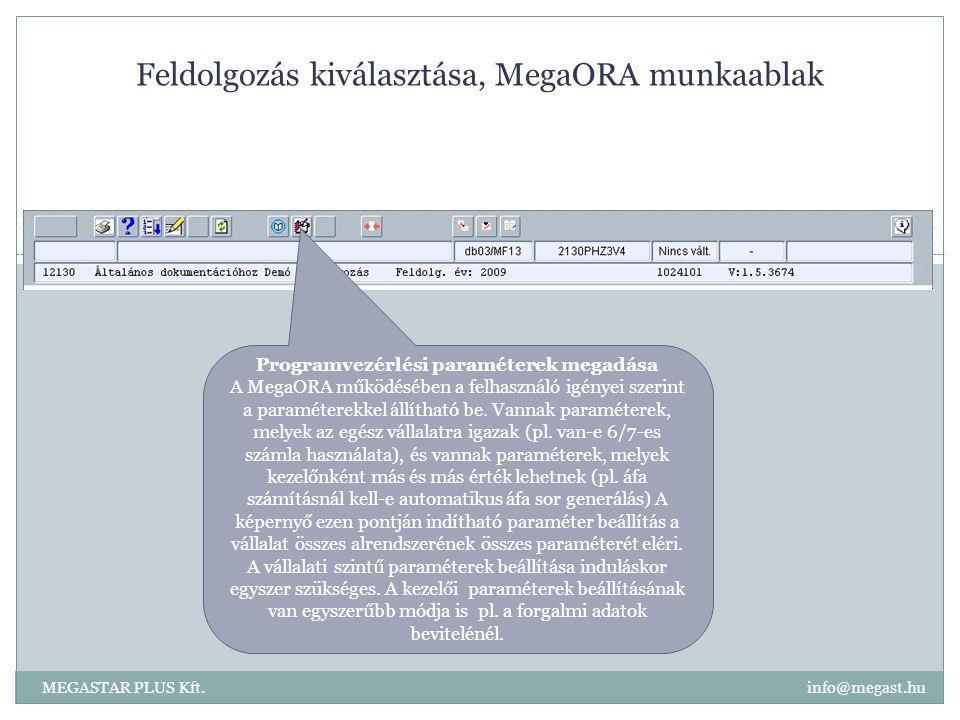 Feldolgozás kiválasztása, MegaORA munkaablak MEGASTAR PLUS Kft. info@megast.hu Programvezérlési paraméterek megadása A MegaORA működésében a felhaszná