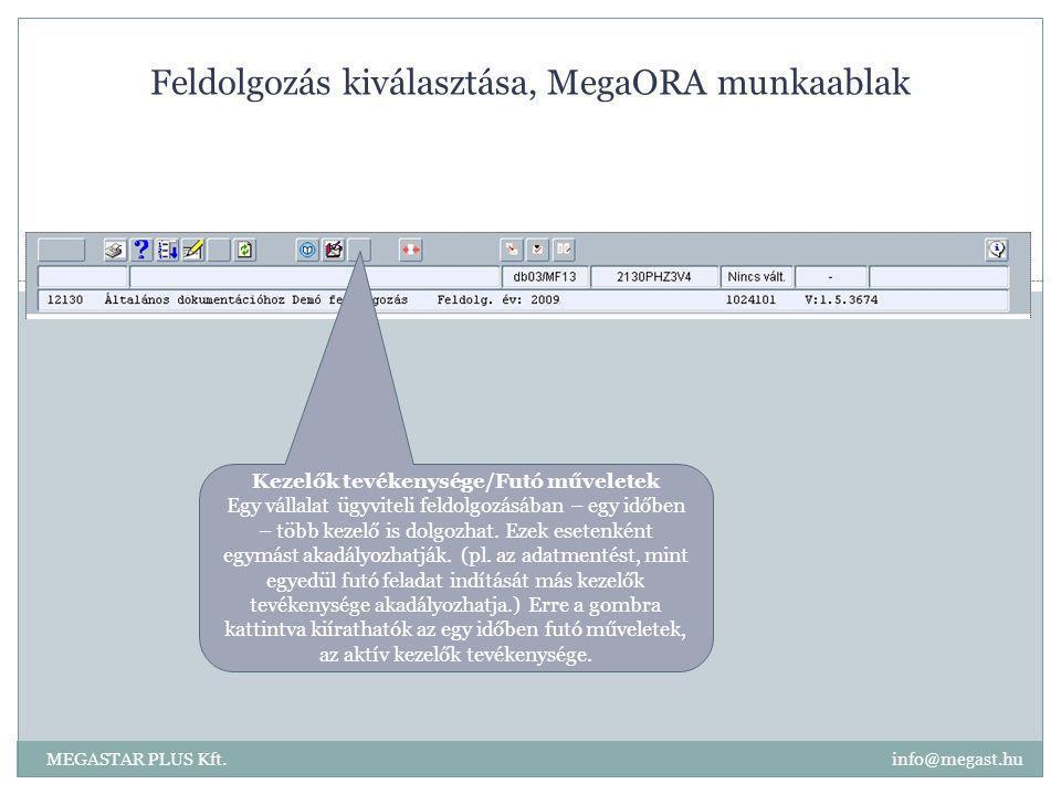 Feldolgozás kiválasztása, MegaORA munkaablak MEGASTAR PLUS Kft. info@megast.hu Kezelők tevékenysége/Futó műveletek Egy vállalat ügyviteli feldolgozásá