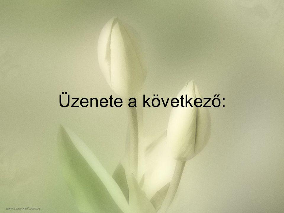 Üzenete a következő: