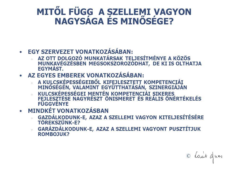 © MITŐL FÜGG A SZELLEMI VAGYON NAGYSÁGA ÉS MINŐSÉGE.