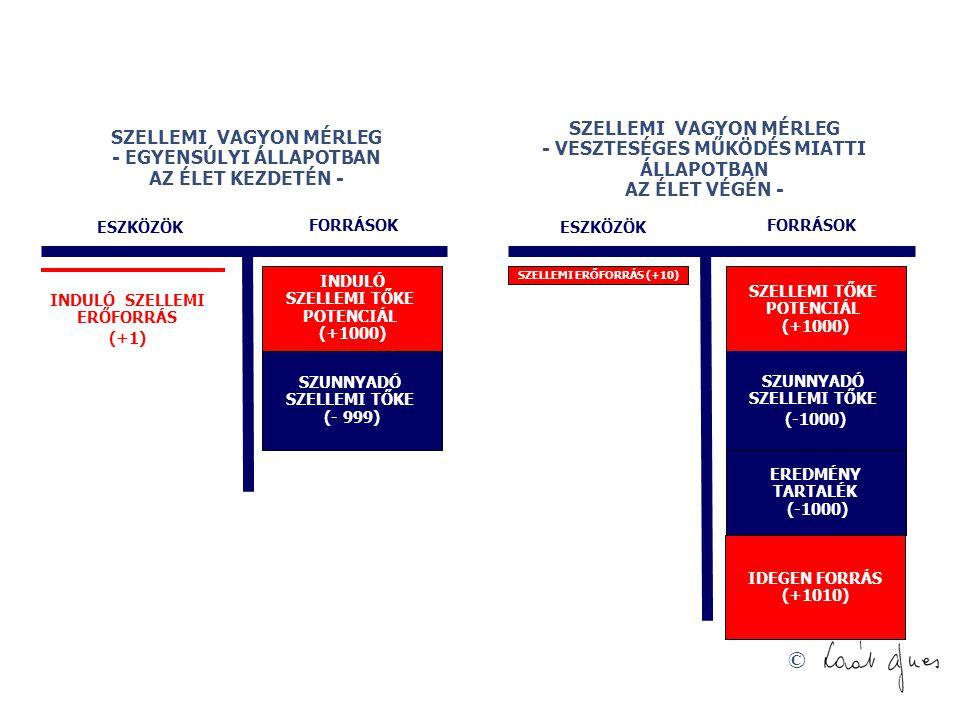 © SZELLEMI VAGYON MÉRLEG - EGYENSÚLYI ÁLLAPOTBAN AZ ÉLET KEZDETÉN - INDULÓ SZELLEMI TŐKE POTENCIÁL (+1000) FORRÁSOK SZUNNYADÓ SZELLEMI TŐKE (- 999) SZELLEMI VAGYON MÉRLEG - VESZTESÉGES MŰKÖDÉS MIATTI ÁLLAPOTBAN AZ ÉLET VÉGÉN - SZELLEMI TŐKE POTENCIÁL (+1000) ESZKÖZÖK FORRÁSOK SZUNNYADÓ SZELLEMI TŐKE (-1000) SZELLEMI ERŐFORRÁS (+10) ESZKÖZÖK EREDMÉNY TARTALÉK (-1000) INDULÓ SZELLEMI ERŐFORRÁS (+1) IDEGEN FORRÁS (+1010)